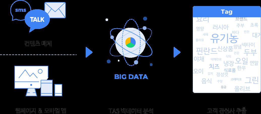 콘텐츠 매체, 웹페이지&모바일 앱, TAS 빅데이터 분석, 고객 관심사 추출